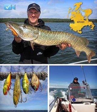 Hecht angeln auf Rügen im Frühjahr