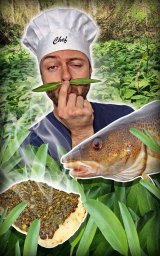 Rezept für Fisch mit Bärlauch-Kräuterkruste