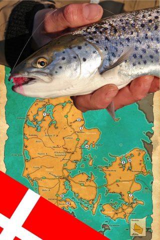Meerforellen angeln im Winter in Dänemark