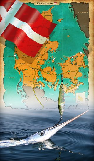 Hornhecht angeln in Dänemark