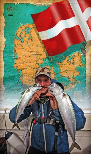 Makrelenangeln in Dänemark