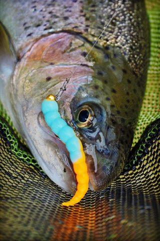 UL-Fischen mit Gummi