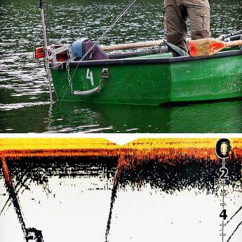 pelagisch auf Zander und Hecht