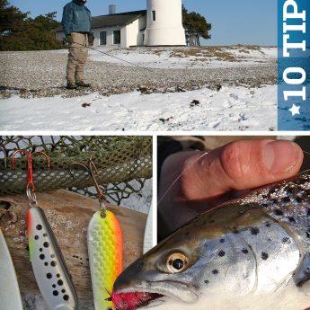 10 Tipps zum Meerforellenangeln im Winter