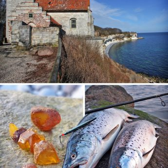 Meerforellenangeln Stevns Klint Dänemark