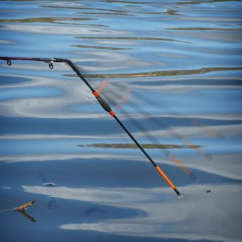 Angeln mit der Schwingspitzenrute