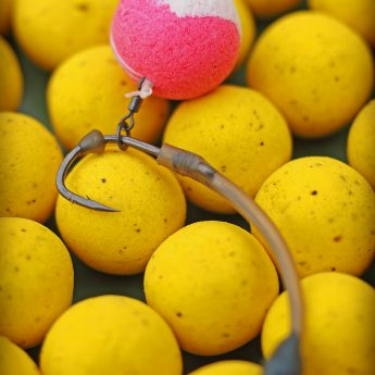 Karpfenrigs für Pop Up Boilies