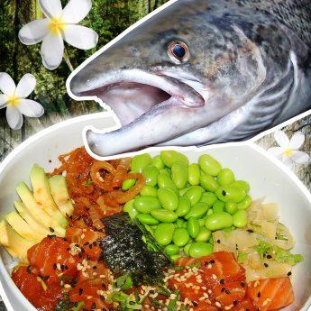 Das Rezept für einen Poke Bowl Rohfischsalat mit Lachs