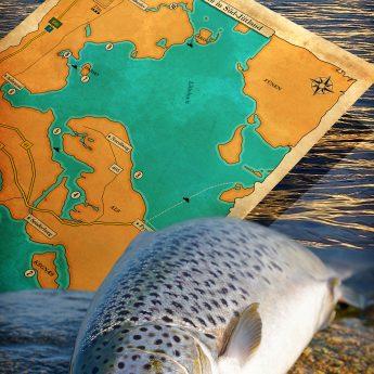 Gute Angelplätze für Meerforellen in der Ostsee