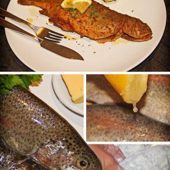 Rezept für Forelle nach Müllerin-Art