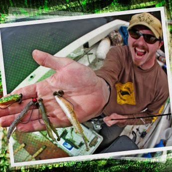 Barsch angeln mit Creature Baits